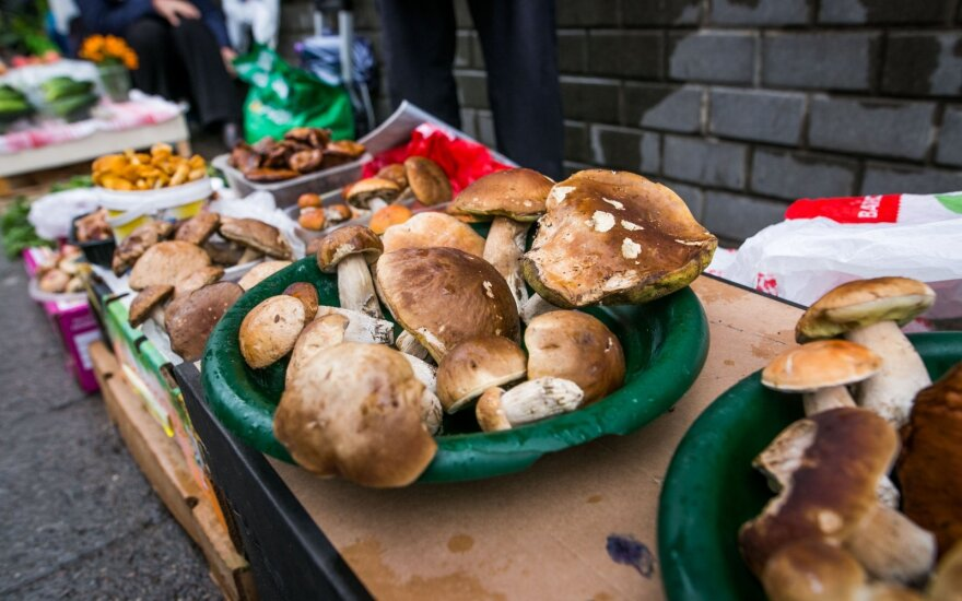 Цены на грибы: сколько грибы стоят в Вильнюсе, а сколько в провинции
