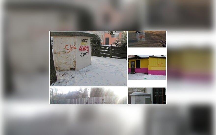 """В Каунасе полиция задержала несовершеннолетнего """"пачкуна"""""""