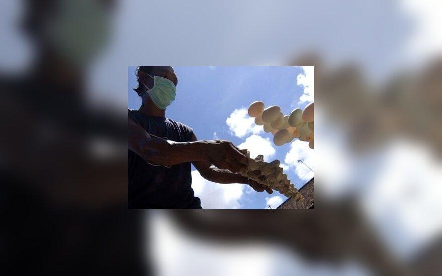 Balio saloje darbininkas išmeta nelegaliai importuotus kiaušinius. Baiminantis paukščių gripo buvo sunaikinta apie 40 tūkst. kiaušinių.