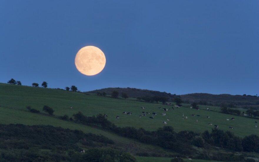 Роскосмос сконцентрирует усилия на Луне
