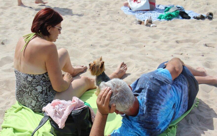 Пляжи Паланги и Швянтои все еще закрыты для домашних питомцев