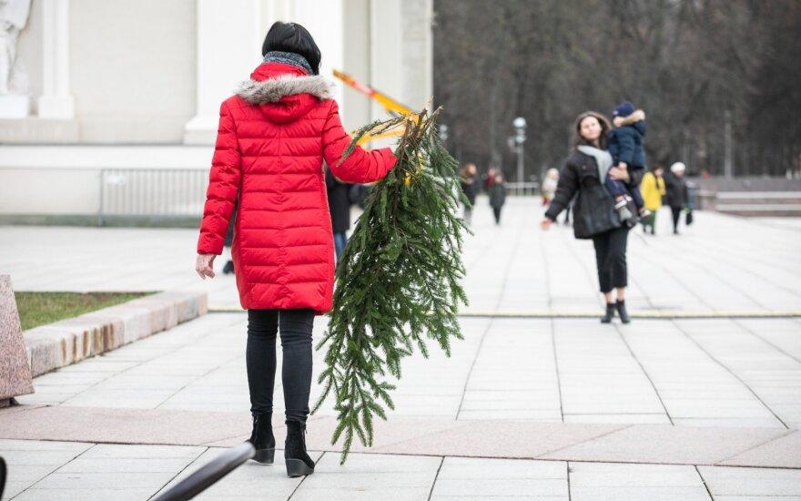 Праздники будут не такими, как ожидалось: в этом году Дед Мороз столкнется с неприятностями