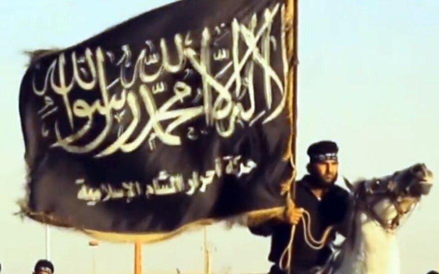 Почти 30 стран пообещали поддержку Ираку в борьбе против ИГ