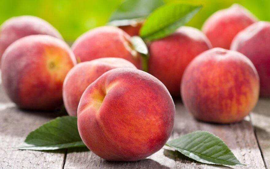 Витебская таможня задержала 20 тонн фруктов из Литвы
