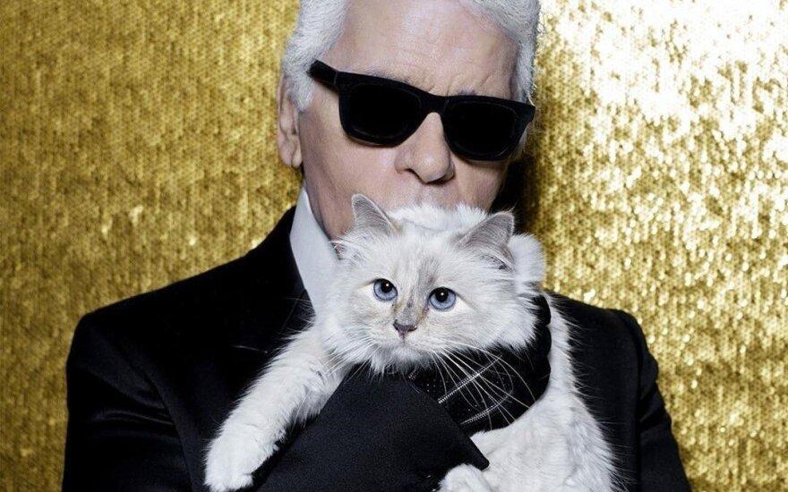 Наследницей состояния Лагерфельда может оказаться его кошка