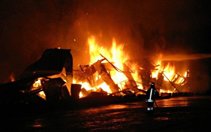 Во время пожара на немецкой ферме погибли 86 верблюдов