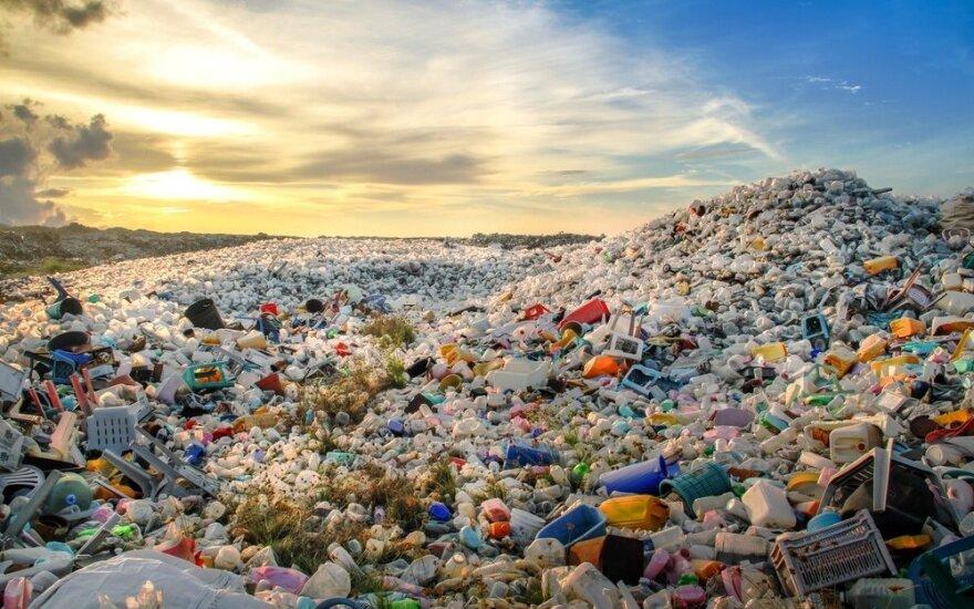 ЕС объявил войну пластмассе. Что ее заменит?
