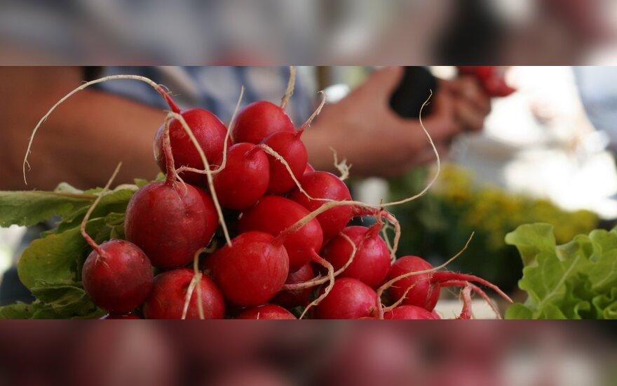 Россия разрешила ввоз овощей из двух стран Евросоюза
