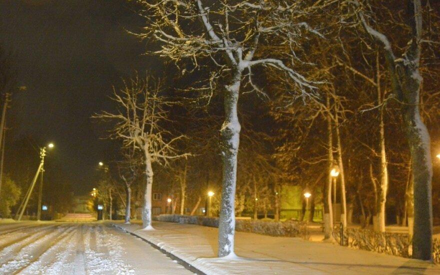 Мокрый снег в Литве валит деревья