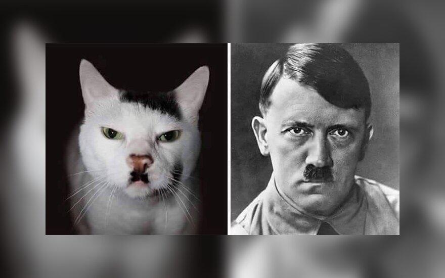 Усы Гитлера – символ зла