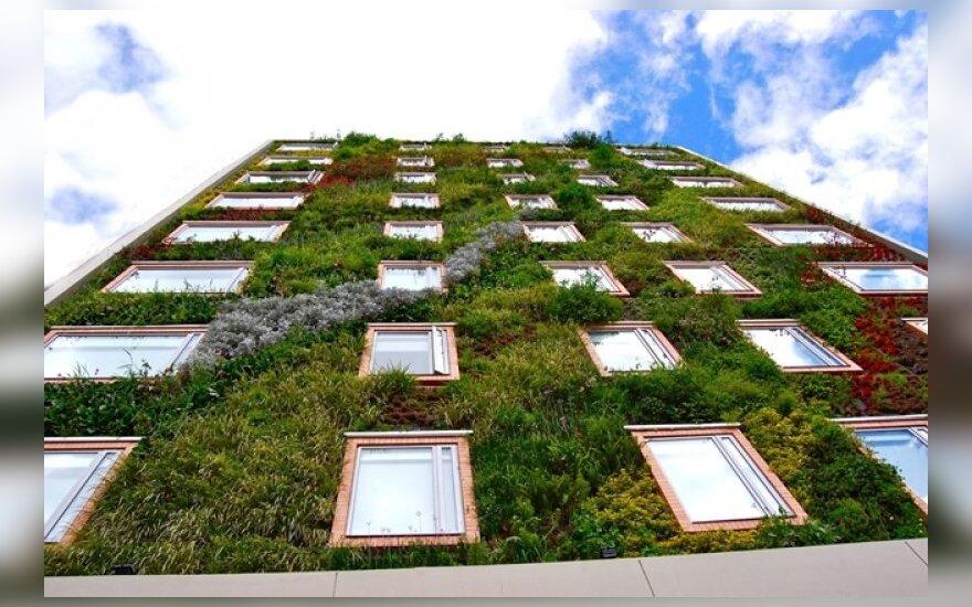 Viešbučio fasadą uždengė 25 tūkstančiai augalų (Paisajismo Urbano nuotr,)