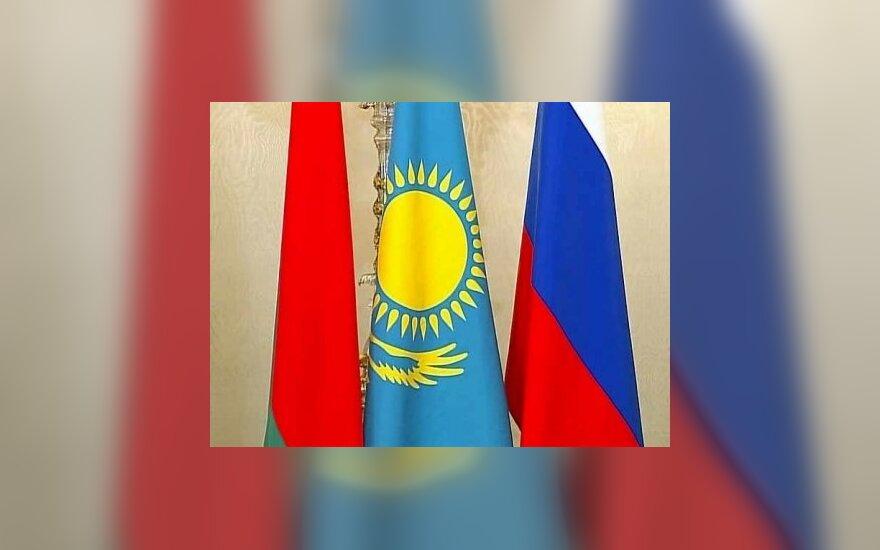 Вступление Украины в Таможенный союз объявили вне закона