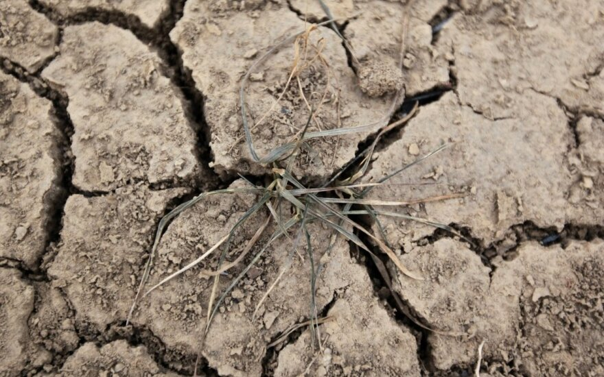 На части территории Литвы - засуха