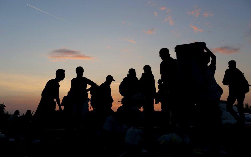Приток мигрантов в Британию бьет все рекорды