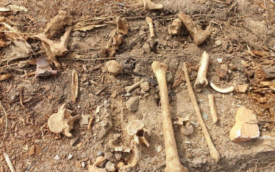 Житель Каунаса нашел на месте гаража, возможно, человеческие останки