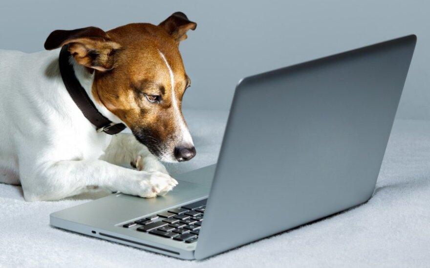 Blogi codzienną inspiracją, czyli jak internetowe dzienniki wzbogacają nasze życie