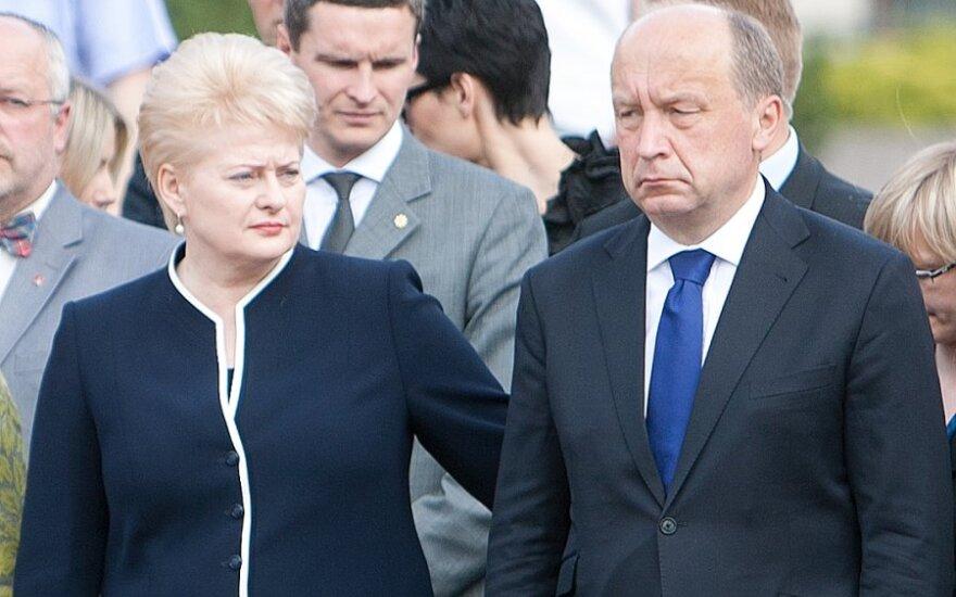 Dalia Grybauskaitė, Andrius Kubilius