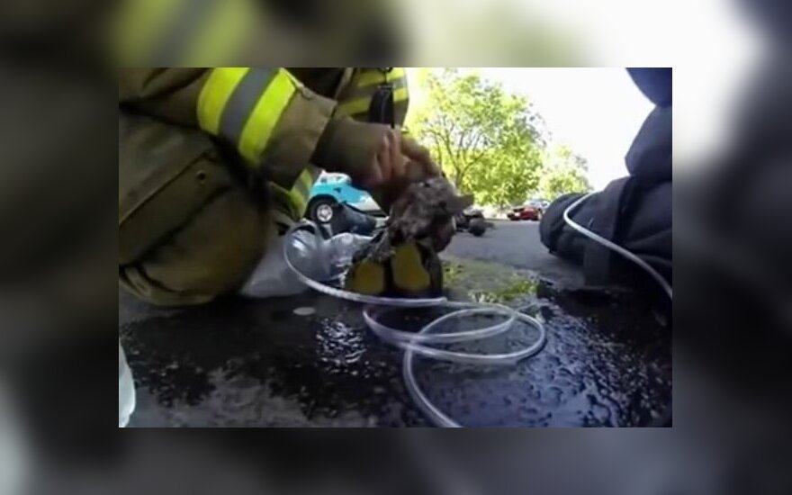 В Алитусе в пожаре погиб человек