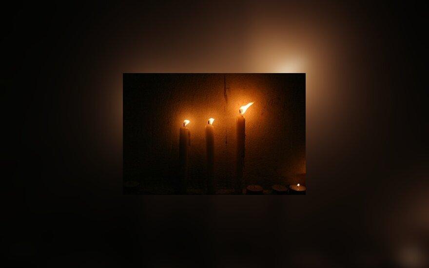 Žvakės