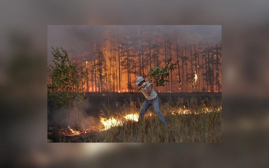 В регионах России не ослабевают жара и пожары