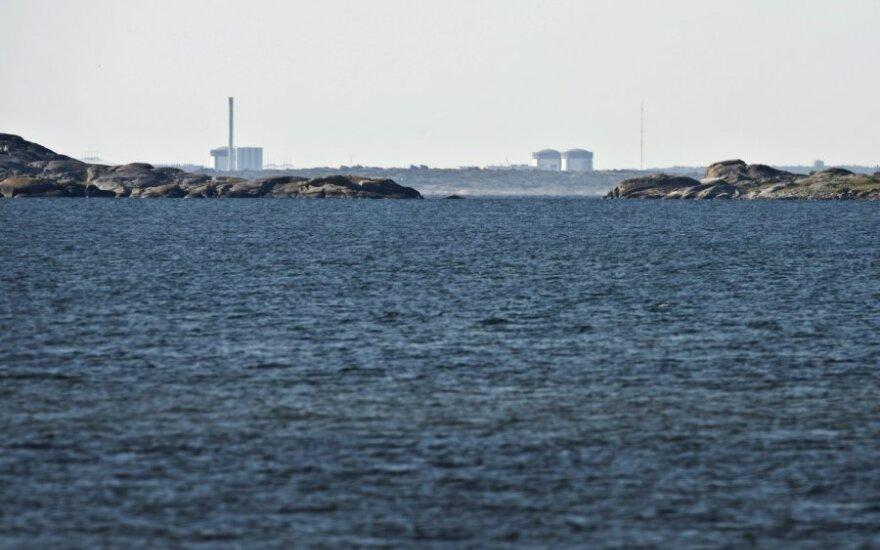 Решение Швеции развивать атомную энергетику - плохой знак для Беларуси