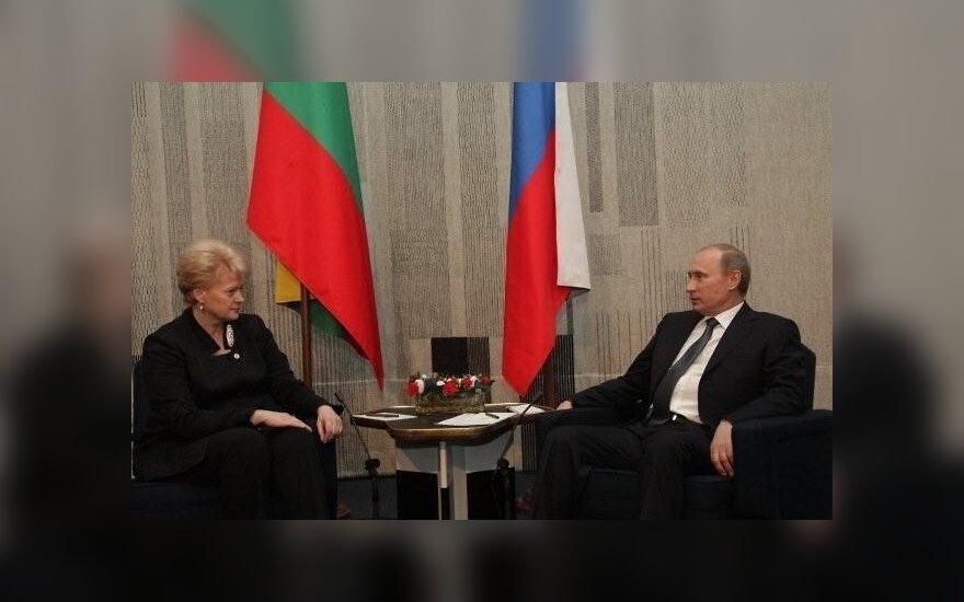 D.Grybauskaitė susitiko su V.Putinu