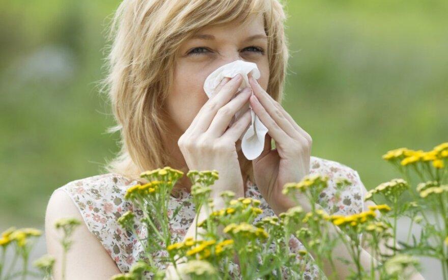 Боремся с аллергией: профилактика, витамины и народная медицина