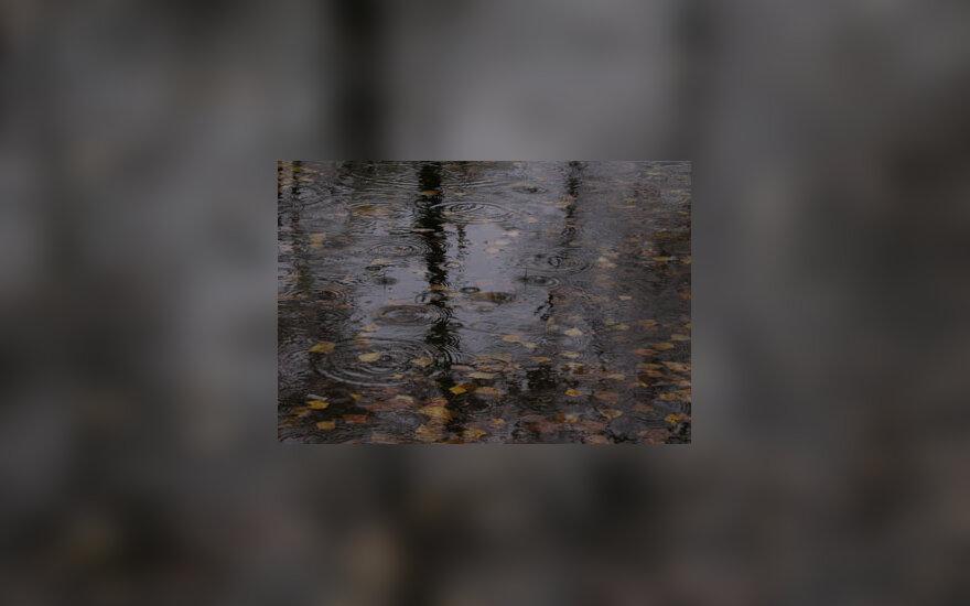 Lietus, dargana, bala., ruduo, liūdesys