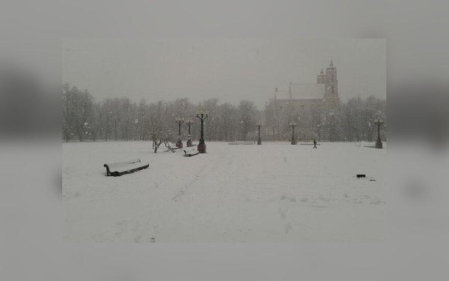 Что ждет Лукишкскую площадь?