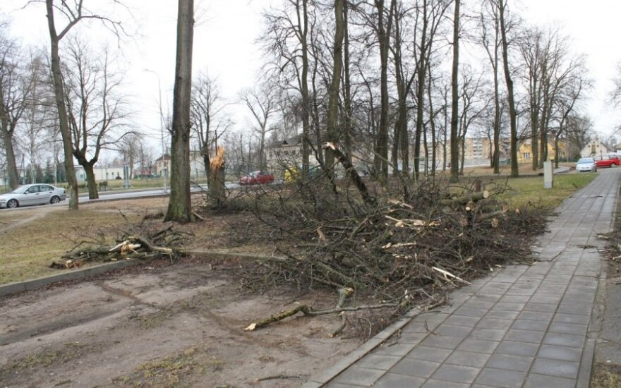 Lietuvoje siaučia vėjas