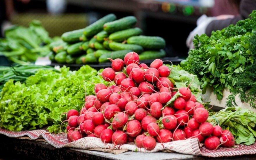 Сравнили овощи на рынке и в торговых центрах: вести не радуют