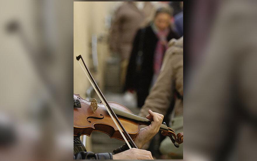 Smuikas, muzika, gatvė, melodija, klasika