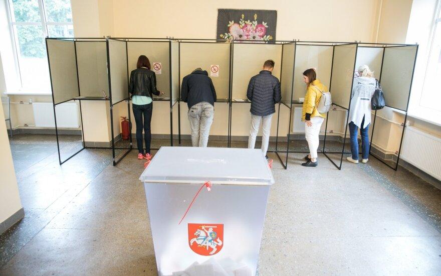 На парламентских выборах 2020 года у проживающих за рубежом литовцев будет отдельный избирательный округ