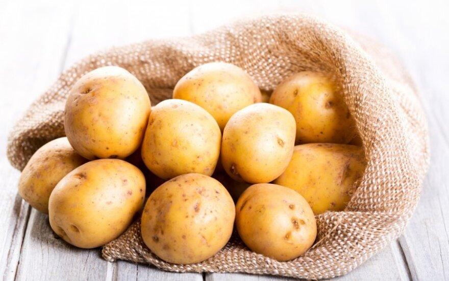 Как белорусы в Вильнюсе продавали картофелину за 1,5 евро