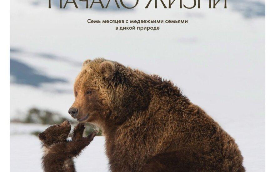 В Литве проходит показ фильма о жизни камчатских медвежат