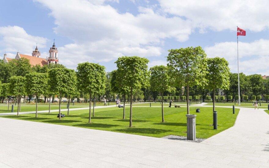 Драма Лукишкской площади не завершилась: памятник должен быть, но не обязательно всадник будет верхом на коне