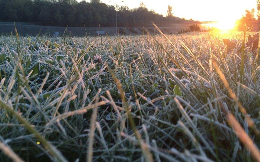 Прогноз: еще два дня будет холодно
