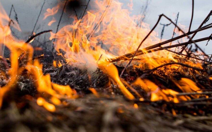 Литовская весна - в пламени горящей травы