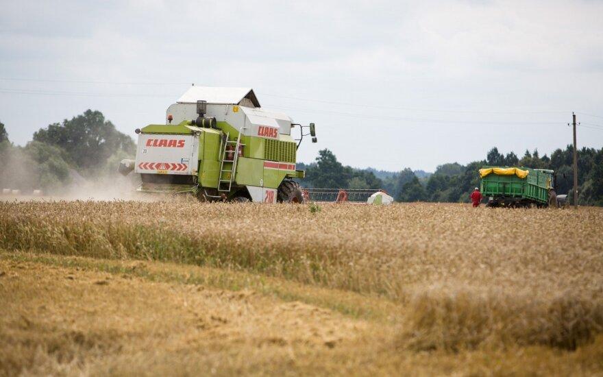 """""""Слишком мало и слишком поздно"""": Литве - 80% среднего показателя дотаций фермерам ЕС"""