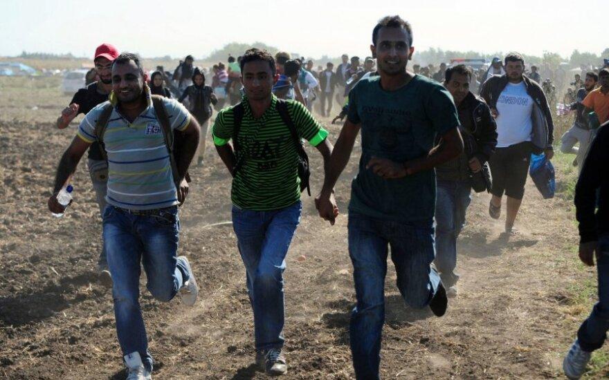 В Литве на магистрали задержаны беженцы из Ирака
