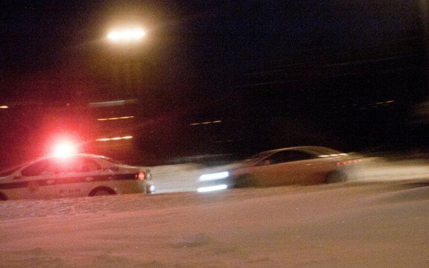 В Утенском районе полицейский автомобиль сбил косулю