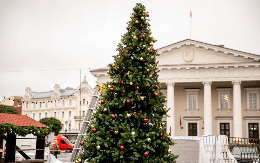 Вильнюсцы потрясены: в центре столицы появилась елка и рождественский городок