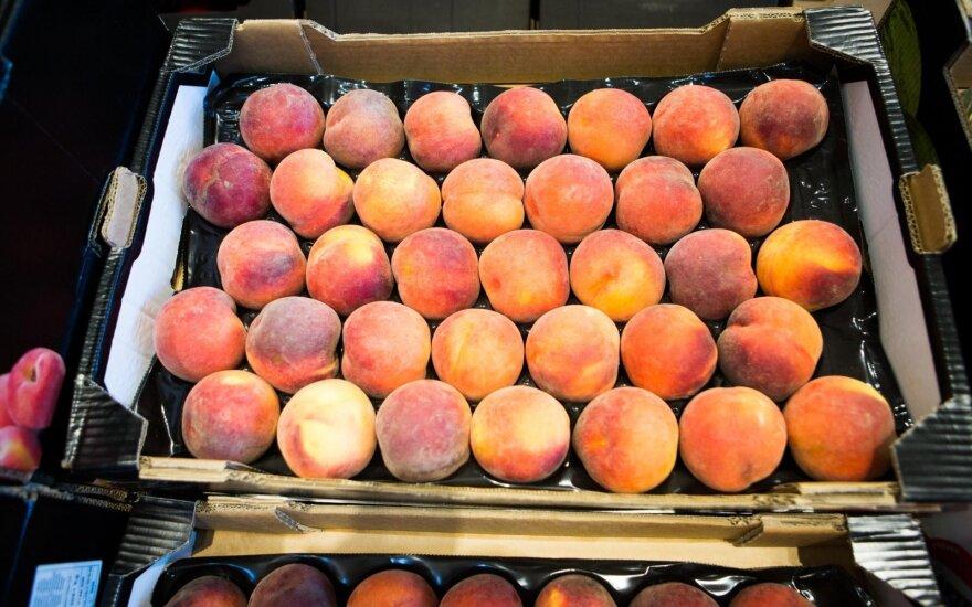 Россия запретила реэкспорт через Беларусь ягод и фруктов из двух стран Африки