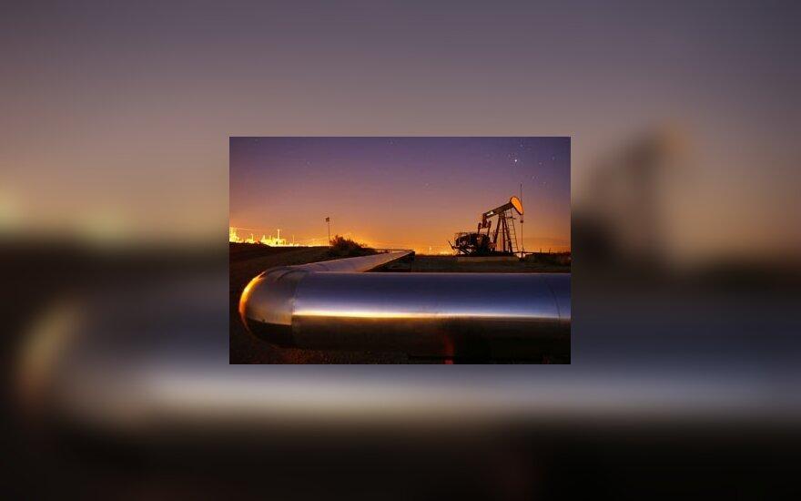 Россия будет поставлять нефть в обход Беларуси