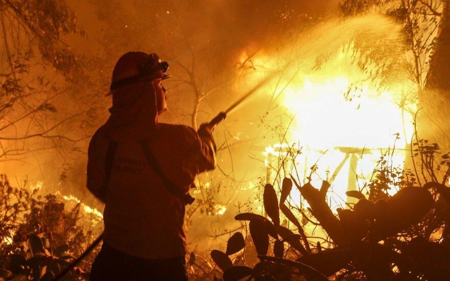Число жертв пожаров в Калифорнии возросло до 25 человек