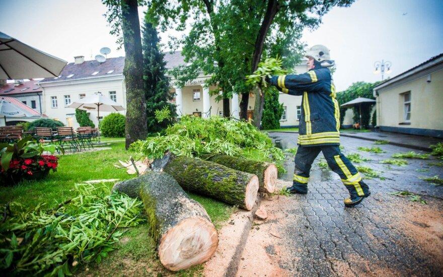 В Литве свирепствует буря: в столице - шквал с градом