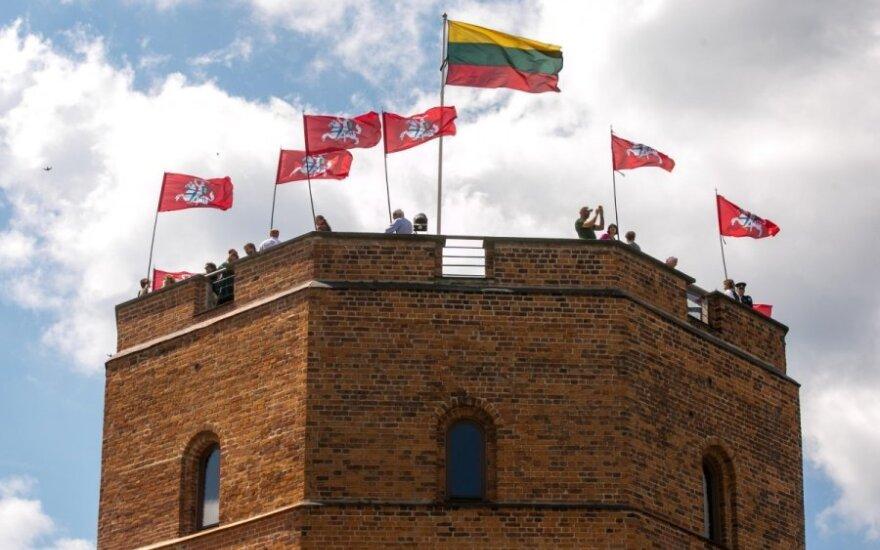 На горе Гедиминаса развевались флаги Витиса