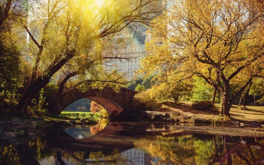 Centrinis parkas Niujorke, JAV