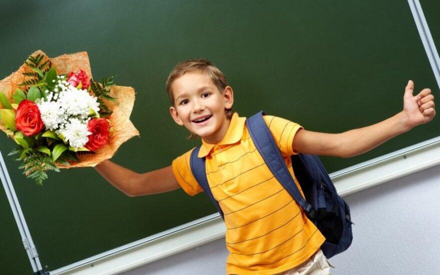 mokinys, mokykla,  berniukas, vaikas, lenta, gėlės, kuprinė