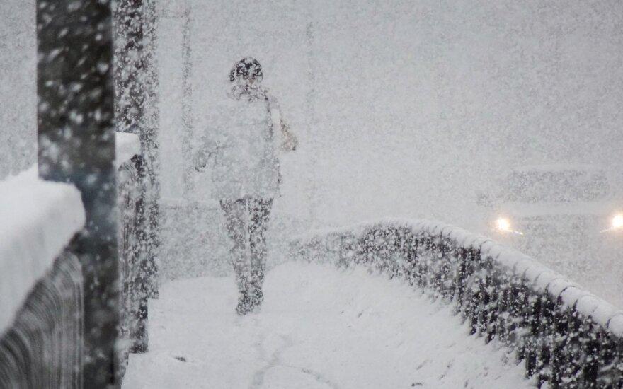Снег в феврале: синоптик говорит, что мало не покажется